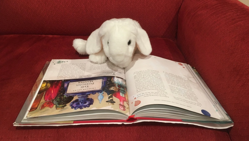Marshmallow is reading Harry Potter and the Sorcerer's Stone, written by J.K. Rowling and illustrated by Jim Kay.