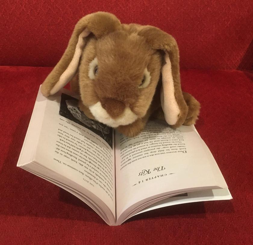 Caramel is reading Ereth's Birthday by Avi.