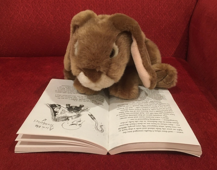 Caramel is reading How to Speak Dragonese (Book #3 of How to Train Your Dragon Series) by Cressida Cowell.