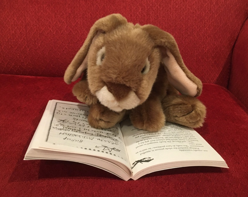 Caramel is reading How to Train Your Dragon by Cressida Crowell.