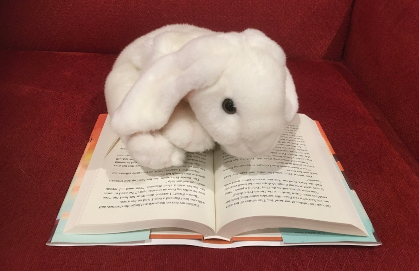 Marshmallow is reading Of A Feather by Dayna Lorentz.