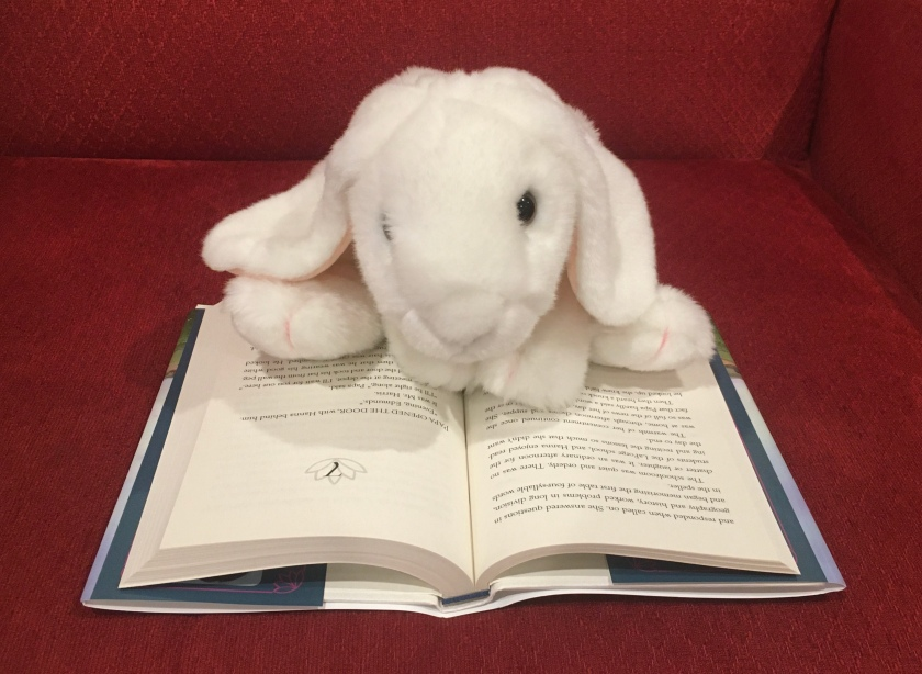 Marshmallow is reading Prairie Lotus by Linda Sue Park.