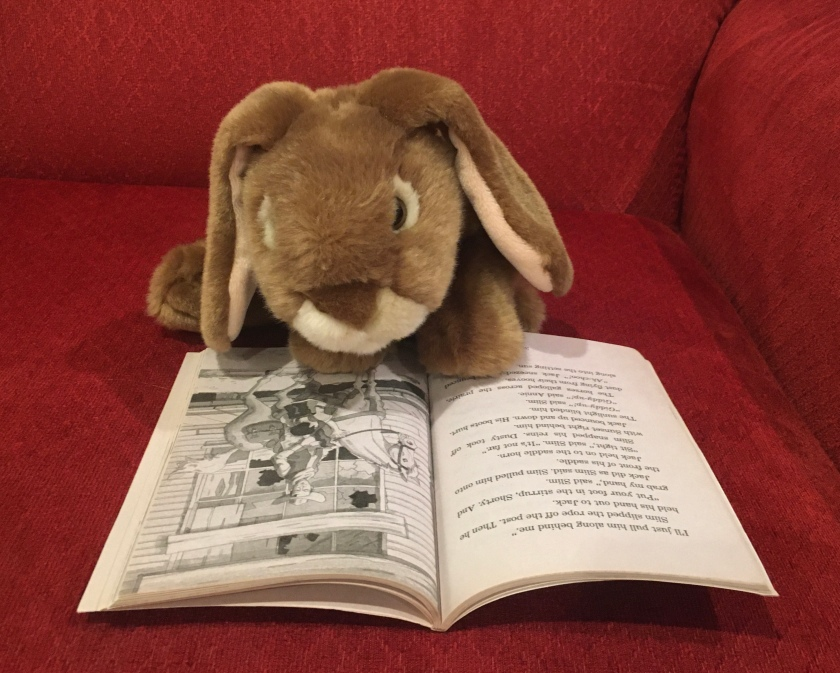 Caramel is reading Ghost Town at Sundown (Magic Tree House #10) by Mary Pope Osborne.