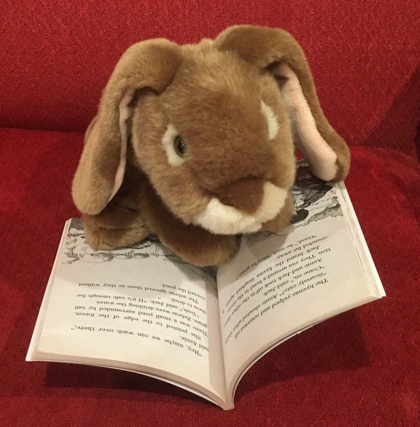 Caramel is reading Lions at Lunchtime (Magic Tree House #11) by Mary Pope Osborne.