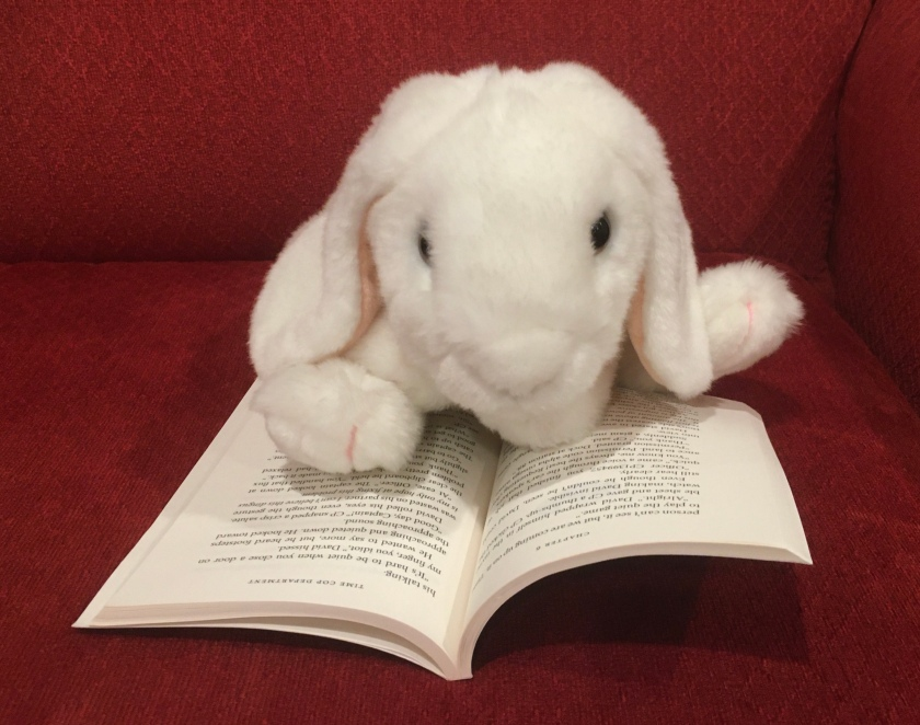 Marshmallow is reading David Massie and the Quantum Flux by Andrew M. Nehring.