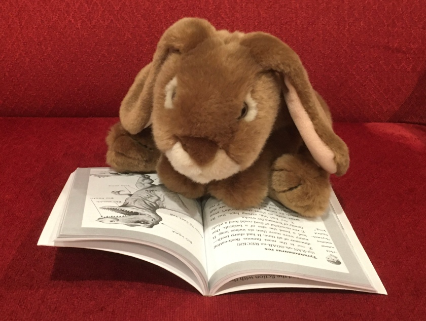 Caramel is reading about Tyrannosaurus Rex in Dinosaurs (Magic Tree House Fact Tracker #1) by Will Osborne and Mary PopeOsborne.