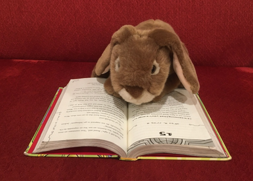 Caramel is reading N.E.R.D.S.: National Espionage, Rescue, and Defense Society, by Michael Buckley.
