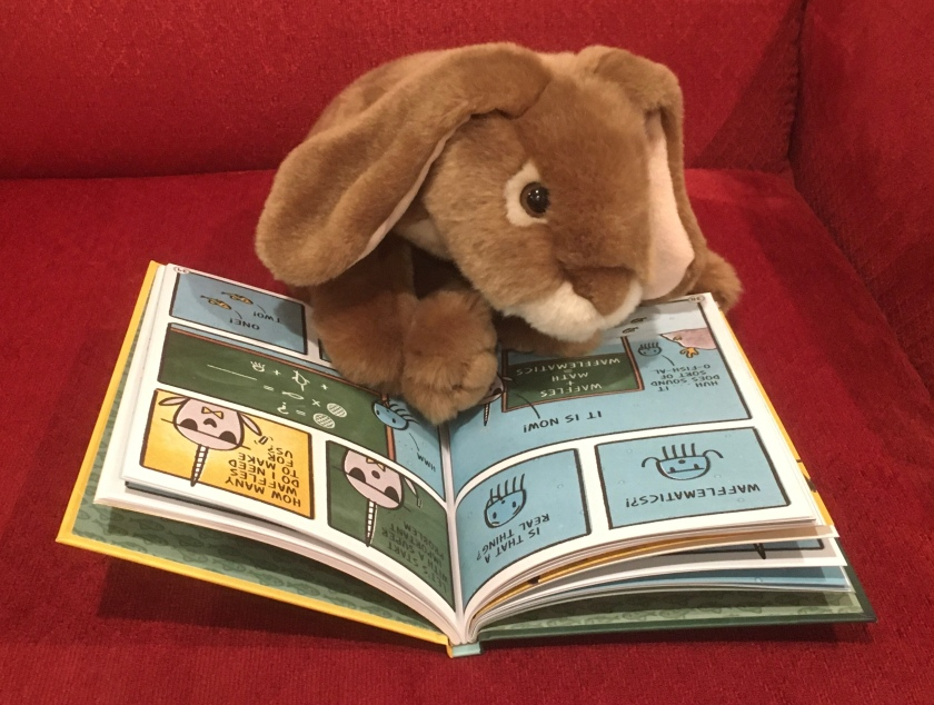 Caramel is reading Narwhal's School of Awesomeness by Ben Clanton.