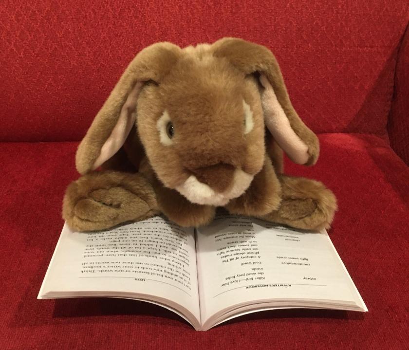 Caramel is reading A Writer's Notebook by Ralph Fletcher.