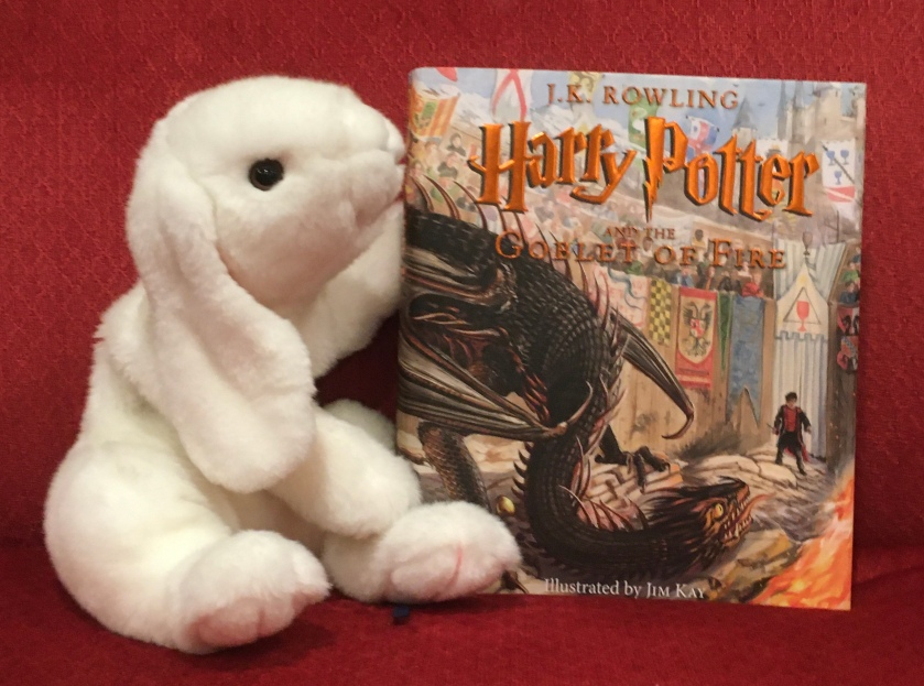 Marshmallow reviews Harry Potter and the Goblet of Fire, written by J.K.Rowling and illustrated by Jim Kay.