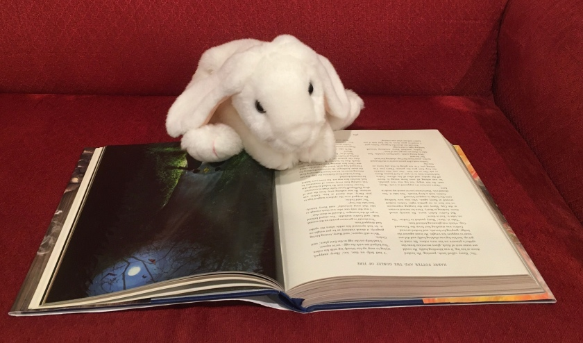 Marshmallow is still reading Harry Potter and the Goblet of Fire, written by J.K.Rowling and illustrated by Jim Kay.