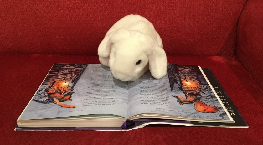 Marshmallow is reading Harry Potter and the Prisoner of Azkaban, written by J.K.Rowling and illustrated by Jim Kay.